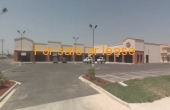 Central Palm Plaza
